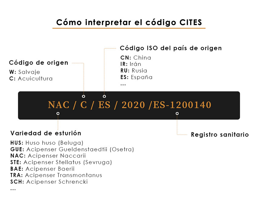 How to interpret the CITES seal